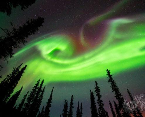 Best Northern Lights Photo, aurora borealis,