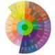 Data Visualization, Sunburst, D3JS, D3, D3.js, Core Competencies